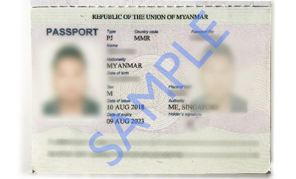Passport Mainpage Sample